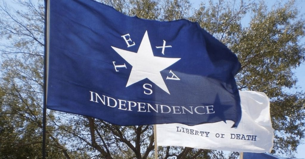 Texas Independence Flag of the Texas Nationalist Movement